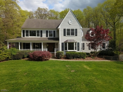 Mendham Twp. Single Family Home For Sale: 29 Calais Rd
