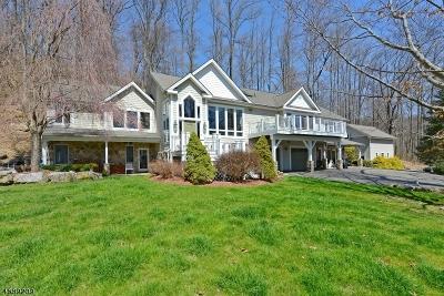 Tewksbury Twp. Single Family Home For Sale: 4 Stoney Ridge Rd