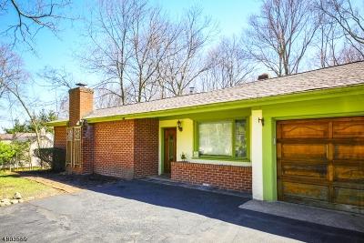 Franklin Lakes Boro Single Family Home For Sale: 898 Franklin Ave