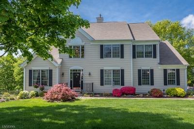 Wayne Twp. Single Family Home For Sale: 4 Almadera Dr