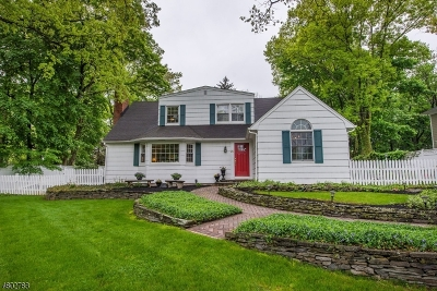 Bernards Twp. Single Family Home For Sale: 26 Peachtree Rd