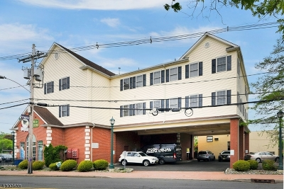 Berkeley Heights Condo/Townhouse For Sale: 147 Plainfield Ave, Unit 4