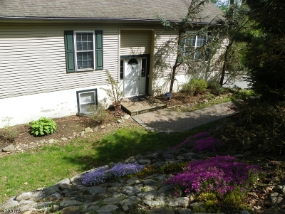 Mount Olive Twp. Single Family Home For Sale: 41 Manor House Rd