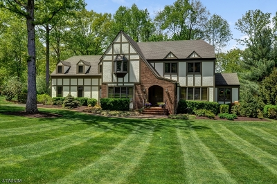 Bernards Twp. Single Family Home For Sale: 25 Summit Dr