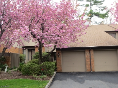 Chester Boro, Chester Twp., Harding Twp., Mendham Boro, Mendham Twp., Morris Twp. Rental For Rent: 36 Keats Way