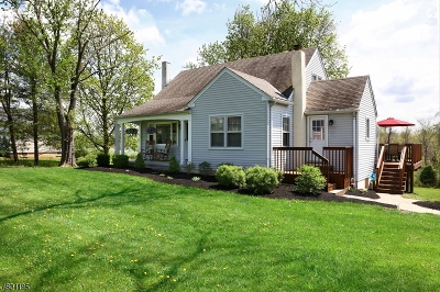 Alexandria Twp. Single Family Home For Sale: 544 Stamets Rd