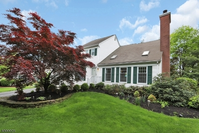 Bernards Twp. Single Family Home For Sale: 8 Hampton Ct