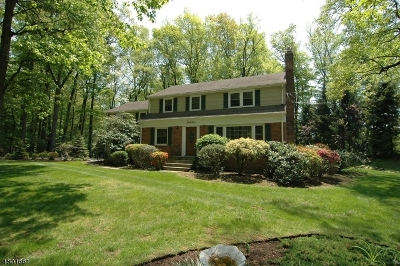 Parsippany-Troy Hills Twp. Single Family Home For Sale: 39 Powder Mill Rd