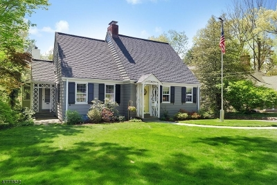 New Providence Single Family Home For Sale: 20 Pittsford Way