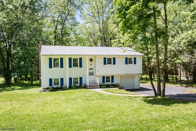 Bridgewater Twp. Single Family Home For Sale: 1264 Washington Valley Rd