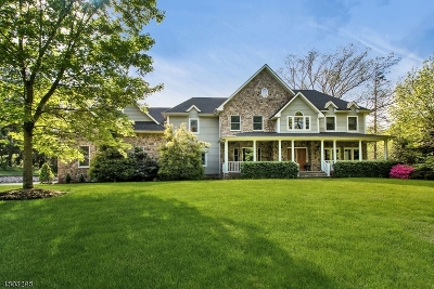 Bernards Twp. Single Family Home For Sale: 150 Pond Hill Road