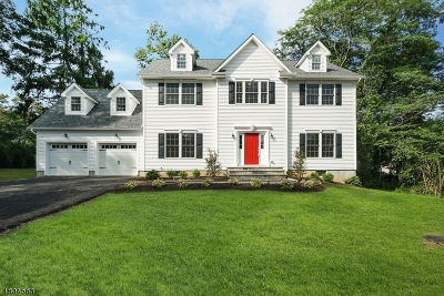 Bernardsville Boro Single Family Home For Sale: 59 Pennington Ave