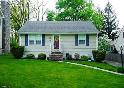 New Providence Single Family Home For Sale: 31 Verona Rd
