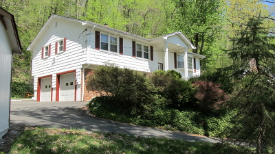 Randolph Twp. Single Family Home For Sale: 63 Grist Mill Rd #1