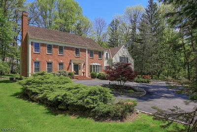 Bernardsville Boro Single Family Home For Sale: 6 Pine Hollow