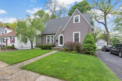 Chatham Boro Single Family Home For Sale: 119 Center Ave