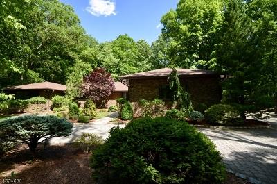 Wayne Twp. Single Family Home For Sale: 16 Apache Rd