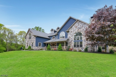 Montville Twp. Single Family Home For Sale: 59 Boonton Avenue