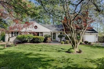Chatham Boro Single Family Home For Sale: 25 Girard Ave