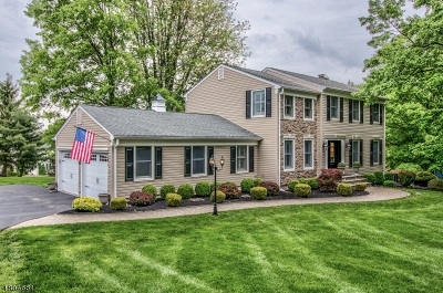 Raritan Twp. Single Family Home For Sale: 15 Deerpond Ct