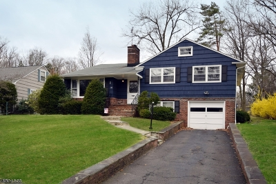 Madison Boro Single Family Home For Sale: 81 Green Village Rd