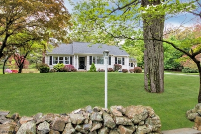 Bernards Twp., Bernardsville Boro Single Family Home For Sale: 44 Old Army Rd