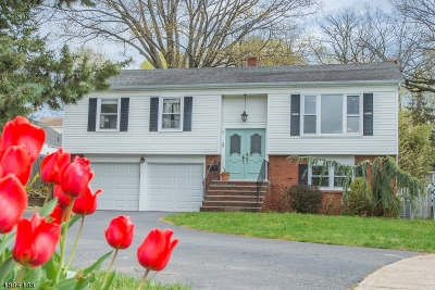 Bloomfield Twp. Single Family Home For Sale: 38 Tomar Ct