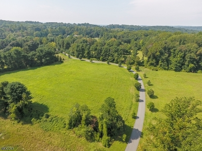 Harding Twp. Residential Lots & Land For Sale: 2 Pinefield Lane