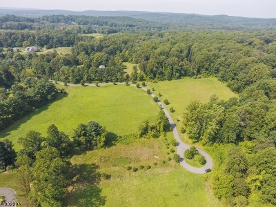 Harding Twp. Residential Lots & Land For Sale: 11 Pinefield Lane