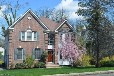Berkeley Heights Single Family Home For Sale: 881 Mountain Ave