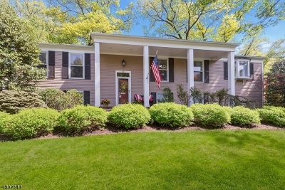 Summit Single Family Home For Sale: 20 Little Wolf Rd