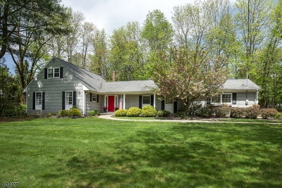 Mendham Boro Single Family Home For Sale: 2 Gunther St