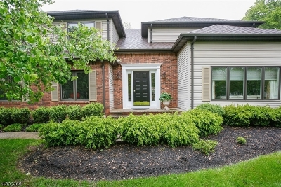 Morristown Town, Morris Twp. Single Family Home For Sale: 23 Cottonwood Rd