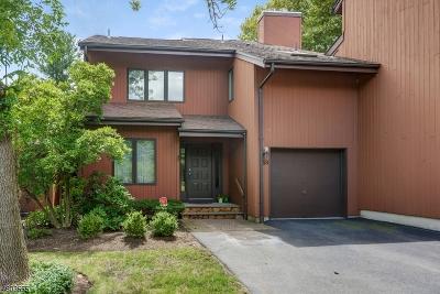 West Orange Twp. Condo/Townhouse For Sale: 53 Mullarkey Dr