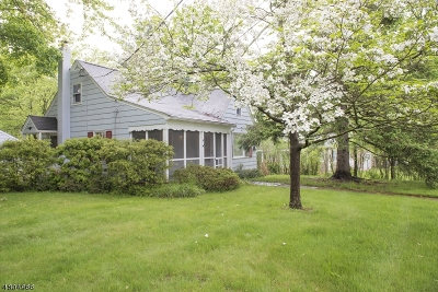 Mendham Boro, Mendham Twp. Single Family Home For Sale: 54 Mountain Ave