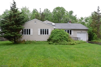 Berkeley Heights Single Family Home For Sale: 31 Cromwell Ct