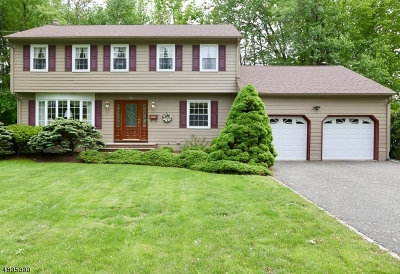East Hanover Twp. NJ Single Family Home For Sale: $650,000