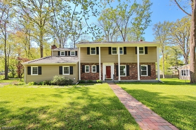 Berkeley Heights Single Family Home For Sale: 198 Sawmill Dr W