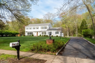 Mendham Boro NJ Single Family Home For Sale: $799,000