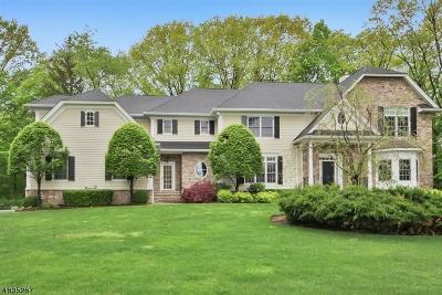Franklin Lakes Boro Single Family Home For Sale: 79 Birch Rd