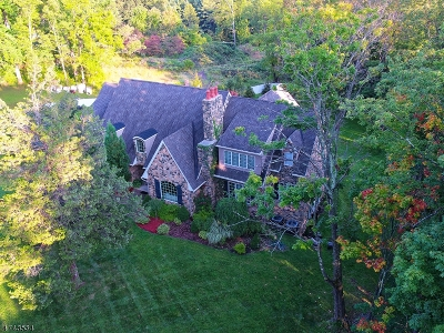 Mendham Boro, Mendham Twp. Single Family Home For Sale: 25 Cold Hill Rd