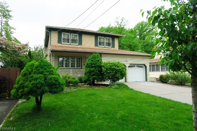 Roselle Park Boro Single Family Home For Sale: 11 E Roselle Ave