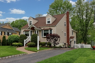 Westfield Town NJ Single Family Home For Sale: $879,000