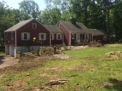 Roseland Boro Single Family Home For Sale: 10 Ford Ln