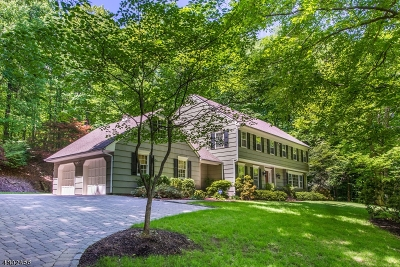Chester Twp. Single Family Home For Sale: 45 Mile Dr