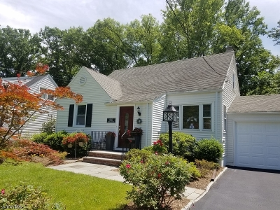 New Providence Single Family Home For Sale: 856 Central Ave
