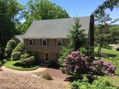 Bridgewater Twp. Single Family Home For Sale: 5 Timberline Dr