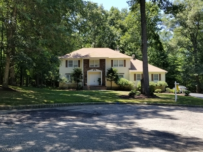 Roxbury Twp. Single Family Home For Sale: 3 Exeter Way