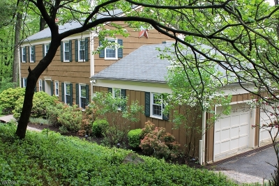 Parsippany Single Family Home For Sale: 14a Long Ridge Rd