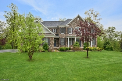 Mount Olive Twp. Single Family Home For Sale: 11 Sovereign Dr